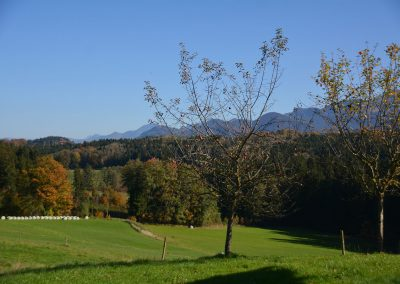 Ausblick Bauniglerhof